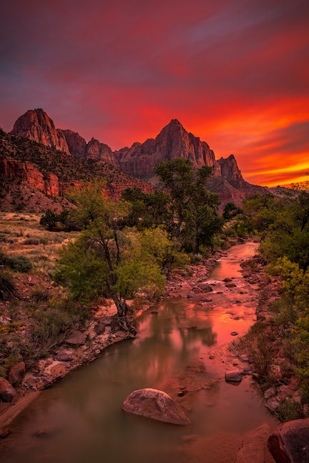 Sailor's Delight, the Watchman, Zion National Park