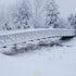 Jorgenson Project Footbridge at Benson Park