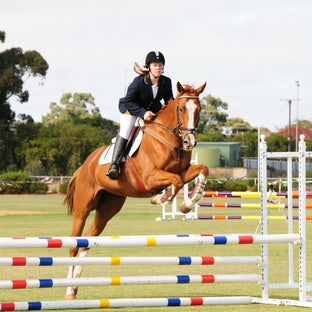 Equestrian - Combining Kerri's love of horses and photography, these are from local events.