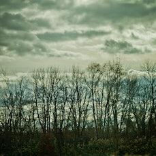 Yesin's Photography