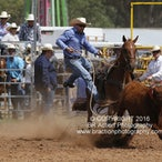 Kyabram APRA Rodeo 2016 - Slack Session