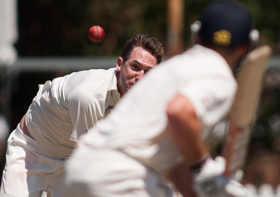 cricket-115