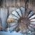 IMG_6715 Windmill Fan Background FINAL