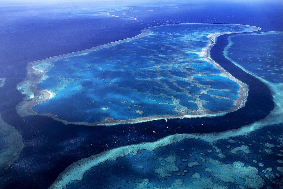 Hardy Reef - Great Barrier Reef, QLD