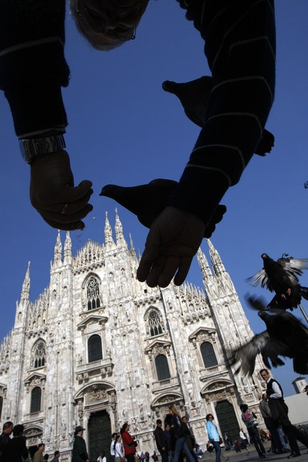 Feeding pigeons, Milan
