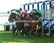 31 OCT RANDWICK BARRIER TRIALS