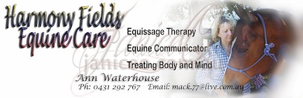 Harmony Fields Branding - Letterhead for the Equine Therapy business, Harmony Fields. Part of the image branding services offered by JaniceO Digital Art.