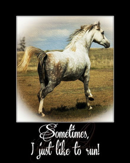 Run Sometimes - inspirational wall art to brighten your home or office.