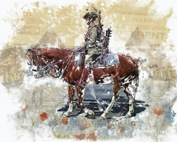 We Remember - Horse and soldier gave their all for their country.