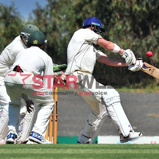 Greenvale Kangaroos - Cricket action.