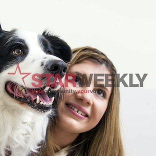 Doggy dentist - Riley with vet Olivia Krstevska