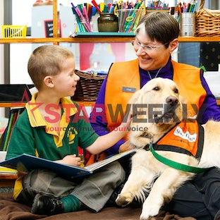 Stumpy the Story Dog - Our Lady of Mount Carmel Primary School student Connor (6) reads with Stumpy the Golden Retriever and Cindy McGregor as part of...