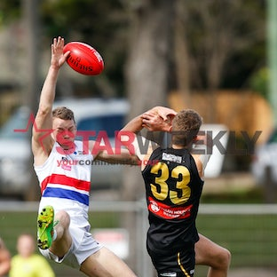 VFL Round 20: Werribee and Footscray - Pictures by Luke Hemer