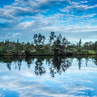 Wallamba River - Photos taken along Wattle Point Road, Great Lakes area, Northern NSW. Stunning reflections in the late afternoon.