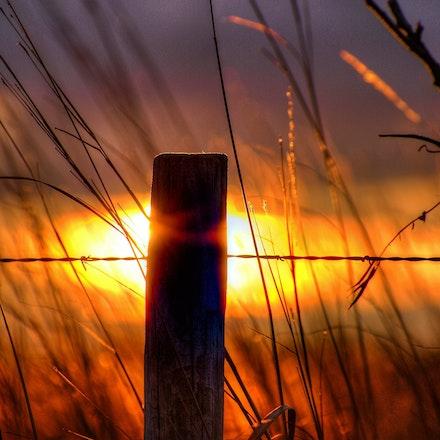 Fences & Windmills