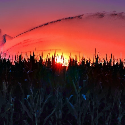 Peek Through The Tassels 7.28.2014.8 - Peek Through the Tassels. An irrigation pivot waters thirsty corn crops against the backdrop of a vivid sunset....
